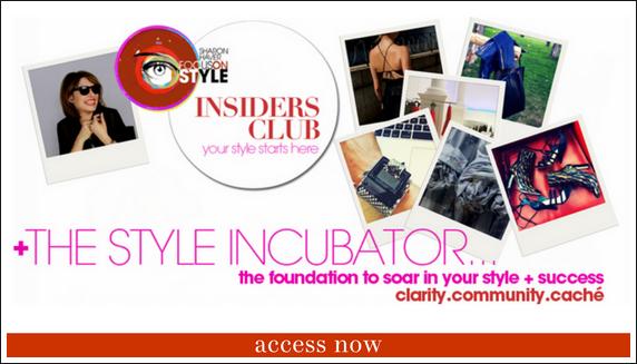 The Style Incubator