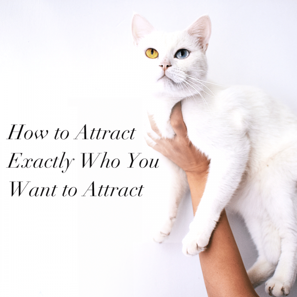 We're All Unique. How to Attract Exactly Who You Want to Attract