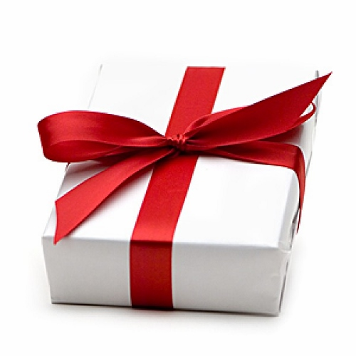 Gift-Giving-Guide (500x500)