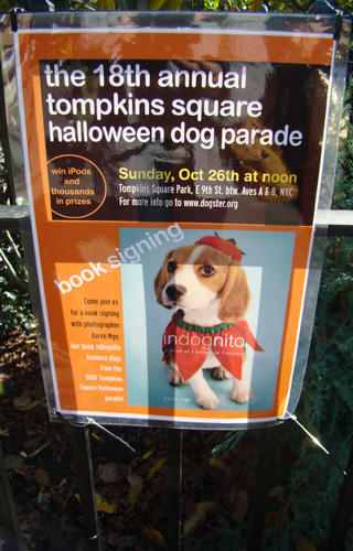 Doggy Style: Halloween Parade is Top Dog