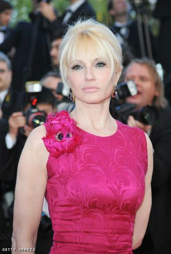 Ellen Barkin  went for a defined smoky eye and pale pink lips to compliment her vivid dress